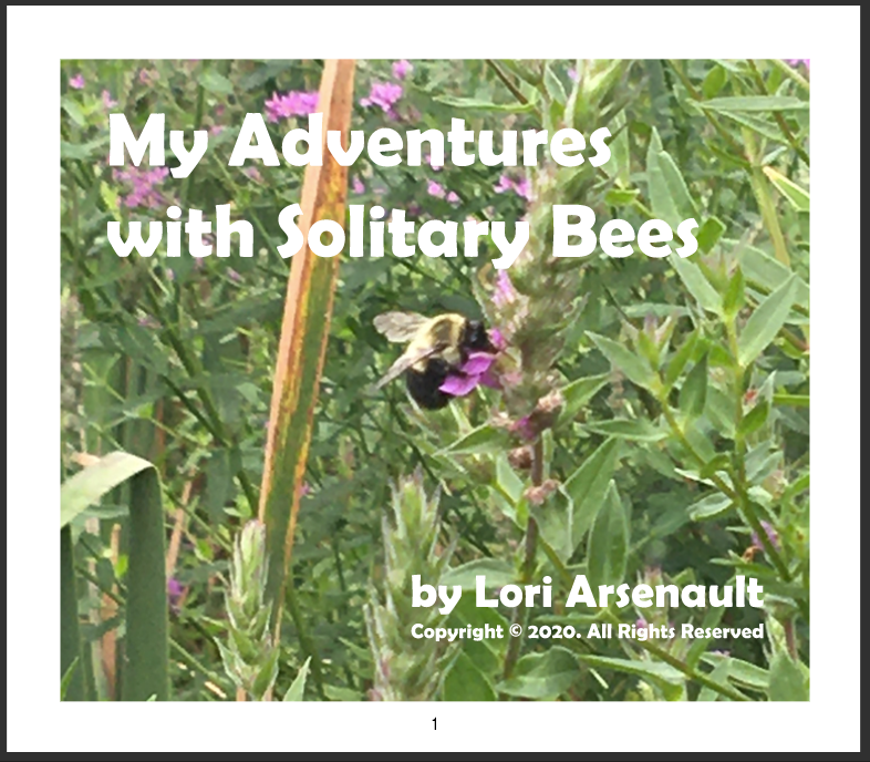 My Adventures with Solitary Bees, cover of a book.